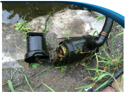 Professional POND Repairs & Leak Detection Contractor